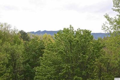 Gatlinburg Residential Lots & Land For Sale: 1015 Daisy