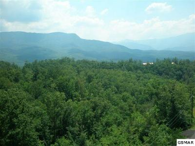 Gatlinburg Residential Lots & Land For Sale: Lot 70 Big Bear Ridge Road