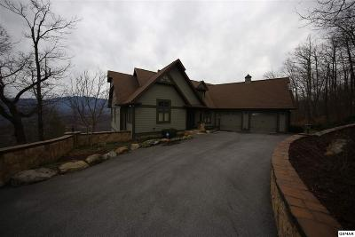 Gatlinburg Single Family Home For Sale: 838 Laurel Top Way