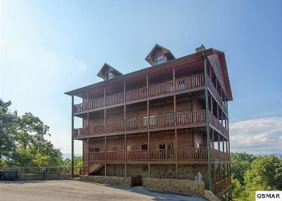 Sevierville Single Family Home For Sale: 2211 Lone Eagle Dr