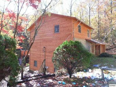 Gatlinburg Single Family Home For Sale: 1119 Raintree Rd