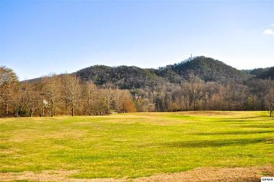 Townsend Residential Lots & Land For Sale: 203 Flintlock Ct, Lot 22
