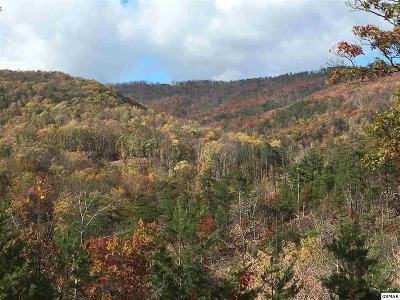 Sevier County Residential Lots & Land For Sale: Lot 67 Smoky Bluff Trail