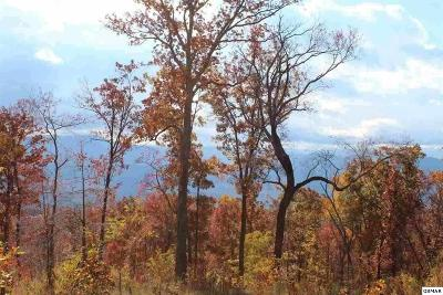 Sevier County Residential Lots & Land For Sale: 146-R Mountaineer Trail
