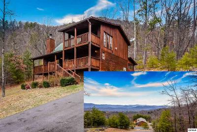 Sevierville Single Family Home For Sale: 2305 Bluff Mountain Road