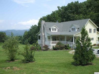 Sevierville Single Family Home For Sale: 3130 Kulpan Way
