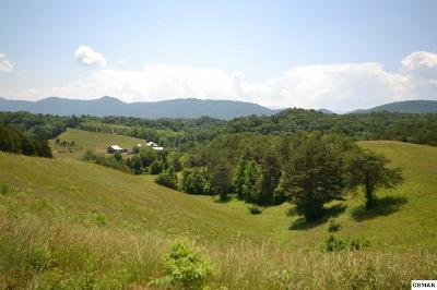 Sevierville Residential Lots & Land For Sale: 3526 Sims Road