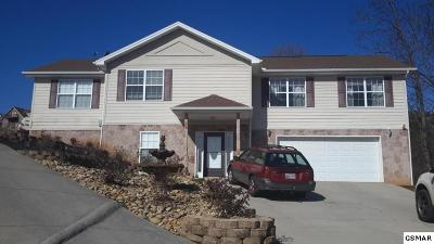 Seymour Single Family Home For Sale: 831 Bridle Court