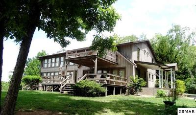 Sevierville Single Family Home For Sale: 848 Ailey Church Ln