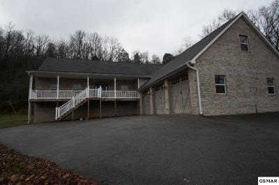 Sevier County Single Family Home For Sale: 1739 Chapman Highway