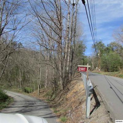 Residential Lots & Land For Sale: Walker Trail