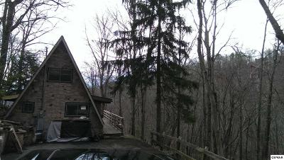 Gatlinburg Single Family Home For Sale: 1131 Alpenrose Rd.