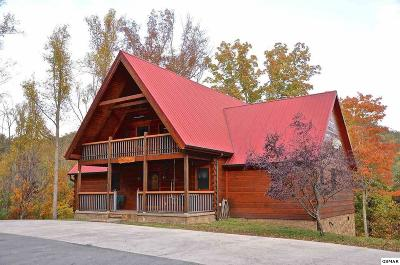 Pigeon Forge Single Family Home For Sale: 3002 Waldens Creek Rd