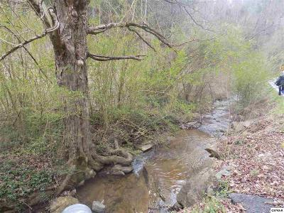 Sevier County Residential Lots & Land For Sale: Parcel 131 Jones Cove Road