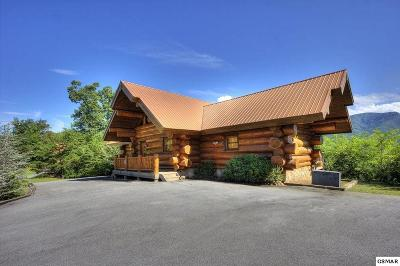 Gatlinburg Single Family Home For Sale: 431 Coyote Way