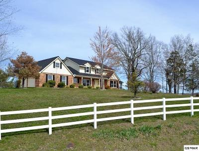 Sevierville Single Family Home For Sale: 2740 Angela Dr
