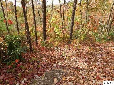 Townsend Residential Lots & Land For Sale: Little Round Top Ln - Lot 7