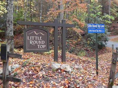 Townsend Residential Lots & Land For Sale: Little Round Top Ln - Lot 8