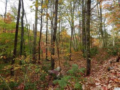 Townsend Residential Lots & Land For Sale: Little Round Top Ln - Lot 9