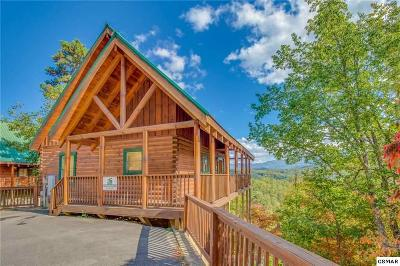 Pigeon Forge Single Family Home For Sale: 4614 Nottingham Heights Way