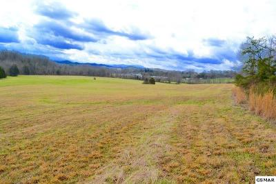 Sevierville Residential Lots & Land For Sale: Flat Creek Rd