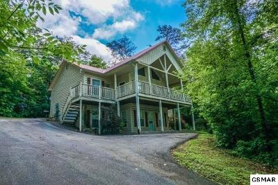 Sevierville Single Family Home For Sale: 616 Magic Kingdom Lane