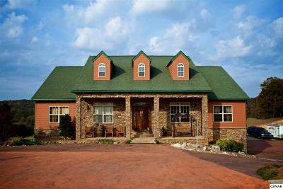 Sevierville Single Family Home For Sale: 2869 Luther Catlett Cir.