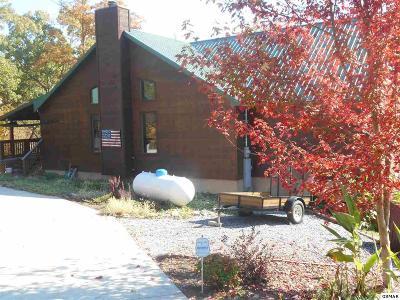 Dandridge TN Single Family Home For Sale: $345,000