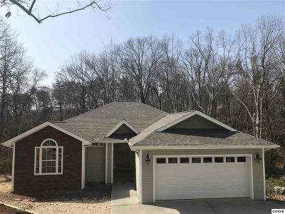 Dandridge Single Family Home For Sale: 805 Swann Rd