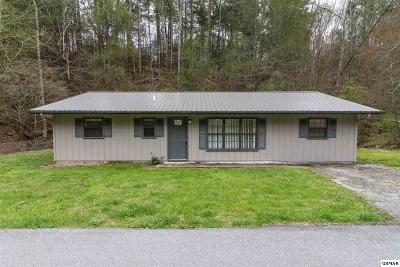 Pigeon Forge Single Family Home For Sale: 509 Cole Drive
