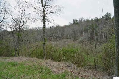 Residential Lots & Land For Sale: Parcel 27.01 Boogertown Rd