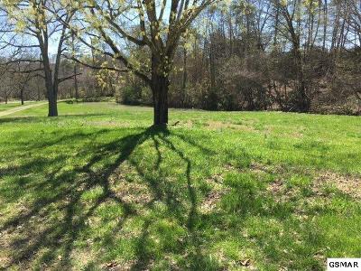Dandridge Farm & Ranch For Sale: 1838 Dumplin Trace Lane