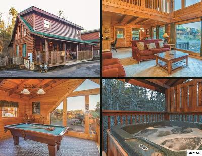 Pigeon Forge Single Family Home For Sale: 539 Blackberry Ridge Way