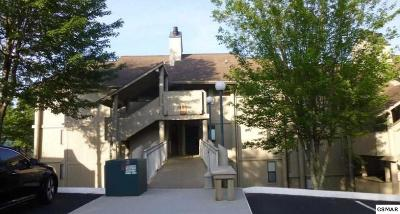 Sevier County Condo/Townhouse For Sale: 3710 Weber Road E