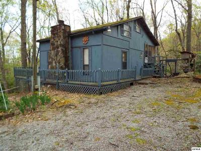 Sevierville Single Family Home For Sale: 3575 Jl Myers Road