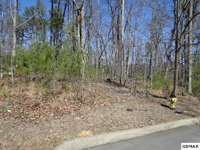 Residential Lots & Land For Sale: Lot 15 Rainbow Falls Ln.