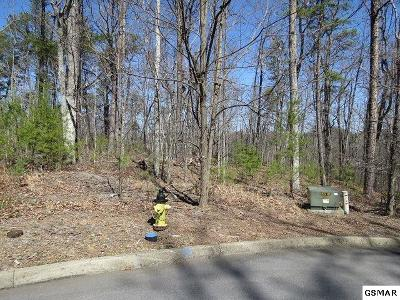 Residential Lots & Land For Sale: Lots 15 & 16 Rainbow Falls Ln.