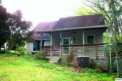 Dandridge Single Family Home For Sale: 1705 Mullins Chapel Rd