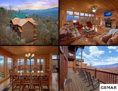 Gatlinburg Single Family Home For Sale: 1183 Ski View Drive