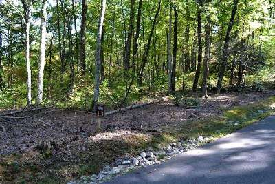 Townsend Residential Lots & Land For Sale: Little Round Top Ln