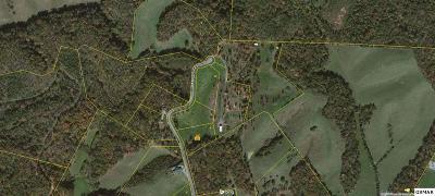 Sevierville Residential Lots & Land For Sale: Lots 10-14 Megen View Lane