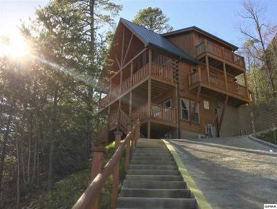 Pigeon Forge Single Family Home For Sale: 4310 Forest Ridge Way