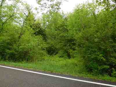Knoxville Residential Lots & Land For Sale: Thorngrove Pike