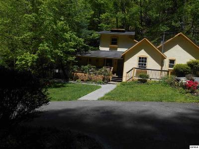 Sevierville Single Family Home For Sale: 737 Waterfall View Lane