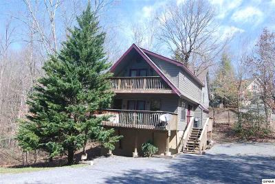 Pigeon Forge Single Family Home For Sale: 2711 Timber Way
