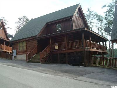 Sevierville Single Family Home For Sale: 1828 Panther Path Way
