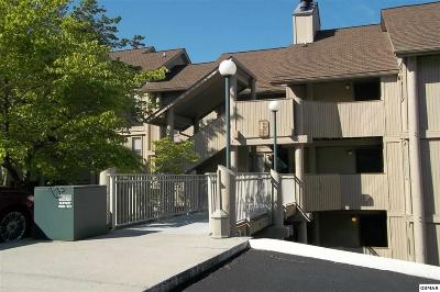 Gatlinburg Condo/Townhouse For Sale: 3710 Weber Rd. U E-106