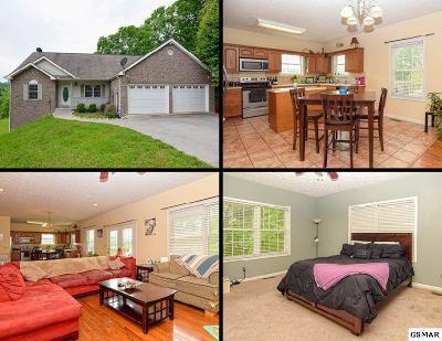 Seymour Single Family Home For Sale: 957 Bobbie Jean Lane