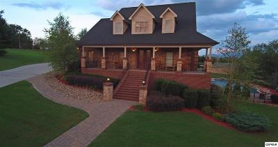 Sevierville Single Family Home For Sale: 861 Spring Lea