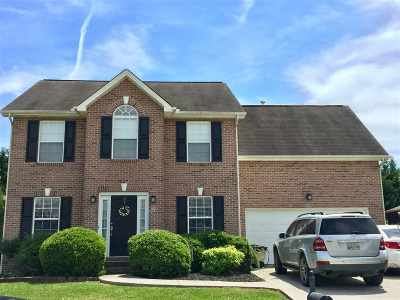Knoxville Single Family Home For Sale: 2427 Sable Point Lane